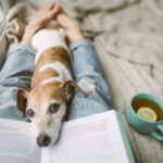 A photo of a person relaxing on their bed with a puppy, book, and coffee nearby for a calming effect.